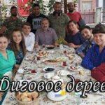 Турецкий сериал Фиговое дерево (2019)