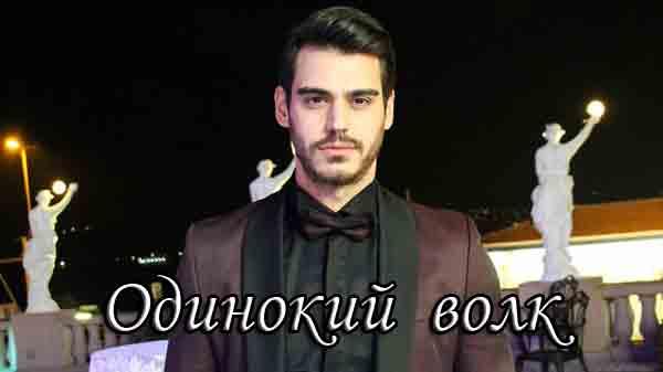 Турецкий сериал Одинокий волк / Yalniz Kurt (2021)